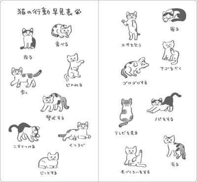 cat-action.jpg